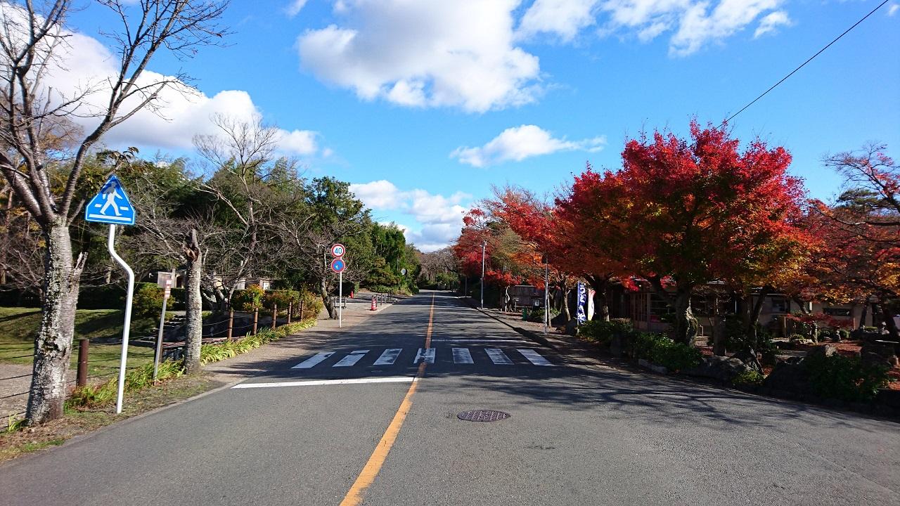 京都マラソンのコース最難関区間