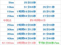 奈良マラソン2012 記録