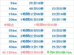 東京マラソン2007 記録
