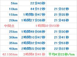 東京マラソン2008 記録