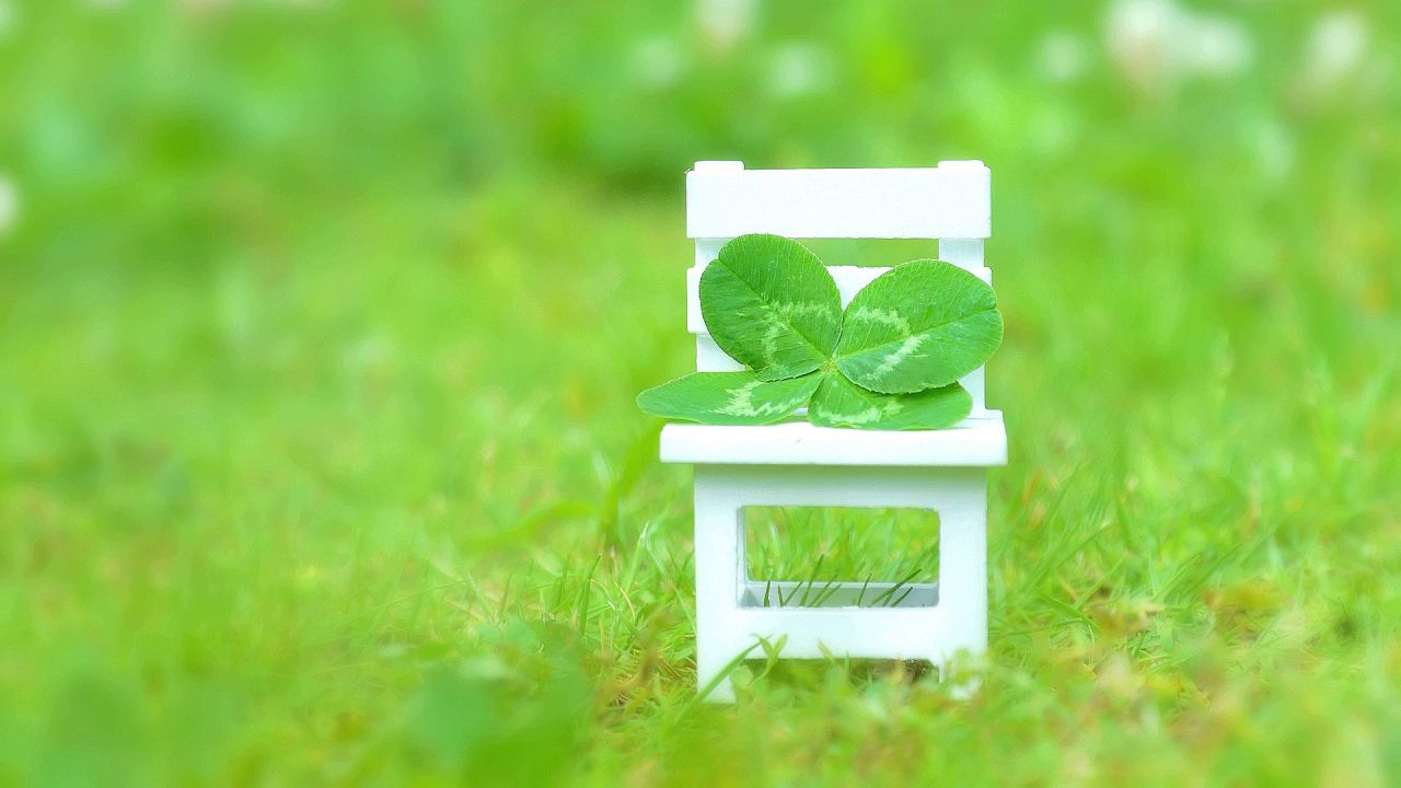 https://www.aroma-life.happy-clovers.com/wp-content/uploads/2020/09/CloverChairMV1280.jpg